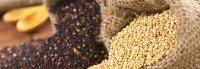 Proteine für Veganer – Woher bekomme ich sie?