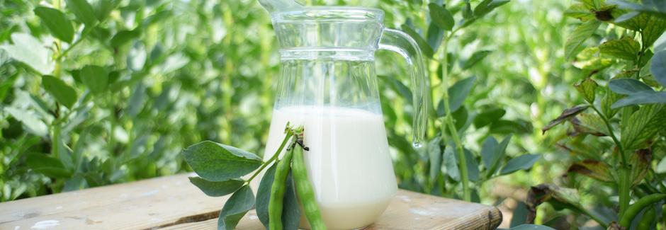 Statt Milch – 7 vegane Alternativen