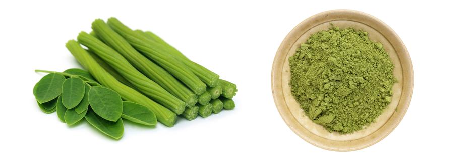 Moringa Oleifera – die Eigenschaften der Wunderpflanze