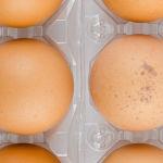 Nicht nur für Umsteiger - 8 vegane Ei-Alternativen