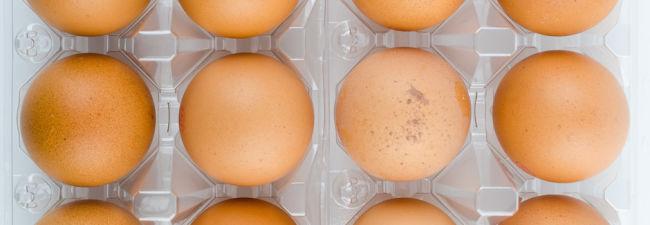 Nicht nur für Umsteiger – 8 vegane Ei-Alternativen