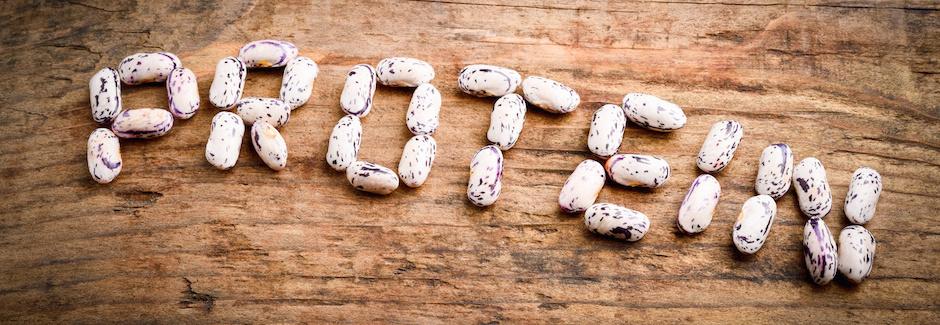 Nicht nur für Veganer – Warum der Körper Proteine braucht