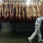 Fleischwirtschaft: Geordnete Ausbeutung
