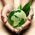 Wie unsere Ernährung dem Klima schadet