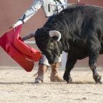 Mallorca verbietet Stierkampf