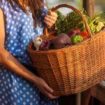 Bewusster einkaufen mit dem Saisonkalender für Obst und Gemüse