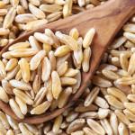 Das Urgetreide Kamut ist die bessere Alternative zu Weizen