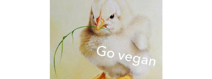 Go vegan – 2. Vegane Messe im Münsterland