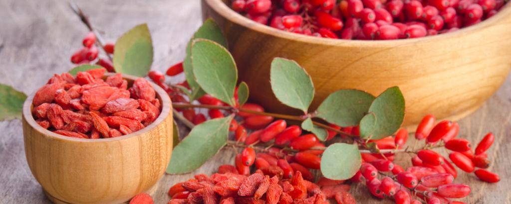 Die Goji-Beere – nährstoffreiche Wunderfrucht
