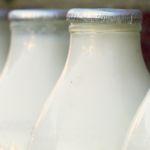 Harvard-Studie deckt auf: Milch ist krebserregend