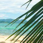 Vegan auf Reisen: Die besten Tipps für die nächste Urlaubsplanung