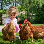 Tierliebe und Fleischkonsum als Widerspruch? Zwei Kinder beziehen Stellung