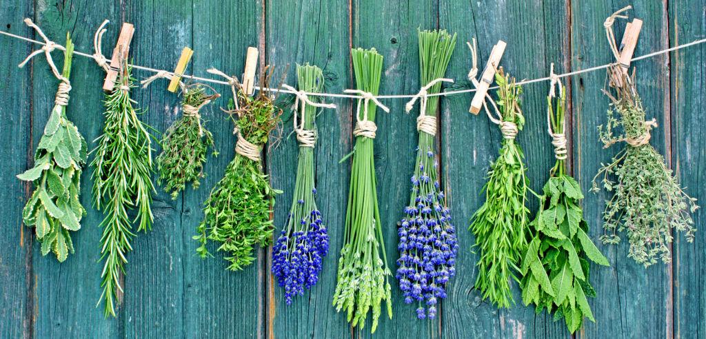 Vegan, gesund und schmackhaft: Kräuter machen den Unterschied